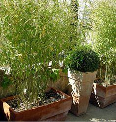 Plus de 1000 id es propos de balcon sur pinterest bambou pots et d co - Terrasse cacher vis a vis ...