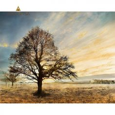 Print με φύλλο χρυσού 100x80.  Από την Alphab2b.gr Streamline Art, Remote, Country Roads, Clouds, Painting, Outdoor, Trees, Outdoors, Painting Art