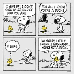 """...I'm sorry, you're not a Duck"". Snoopy & Woodstock."