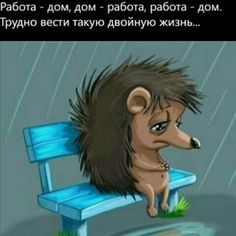 (54) Одноклассники Funny Phrases, Funny Quotes, Funny Memes, Sarcasm, Beautiful Gifts, Funny Pictures, Family Guy, Thankful, Comics