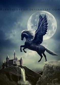 1000+ images about Bella sara on Pinterest | Pegasus, Unicorns and