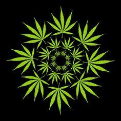 Cannabis Leaf Circle print