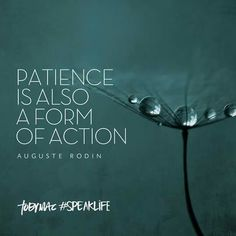 Patience is also a form of action - Auguste Rodin