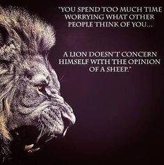 roar..