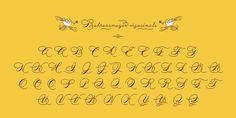 Behrensmeyer Vigesimals™ - Webfont & Desktop font « MyFonts