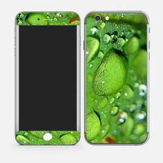 GREEN LEAF WITH WATER DROPLETS iPhone 6 Skins Online In india #mobileSkins #PhoneSkins #MobileCovers #MobileCases http://skin4gadgets.com/device-skins/phone-skins