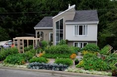 My favourite front yard garden - A front-yard garden in a Quebec town was slated for removal until a petition convinced officials to change their minds.