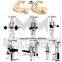 "1,676 Me gusta, 14 comentarios - DEEPLY SHREDDED (@deeply.shredded) en Instagram: ""Want bigger biceps? Try this. Follow us @deeply.shredded for more fitness tips.  @musclemorph_"""