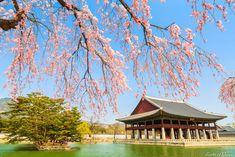 18 HERMOSAS FOTOS DE COREA DEL SUR - Mundo Fama Corea