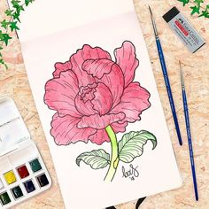I got a new watercolor sketchbook by @moleskine_world to practice my watercoloring. The first tip for myself: less pigment is ok  . #watercolor #watercolorflowers #baspetter . #plantgang #houseplants #watercolour #botanical #plantcollection #artwork #artist #ink #peony #paint #peonies #peonytattoo #winsornewton #creative #moleskine #watercolorflower #drawings #paintings #graphicdesign #sketchbook #colour #sketchaday #colorful #doodle #botanicallinedrawing #flowerart #watercolorflower