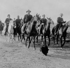 Description: Black and white photo of President Roosevelt on a 60 mile ride from Laramie to Cheyenne, Wyoming, with a dog running in front of the horses, 1903.