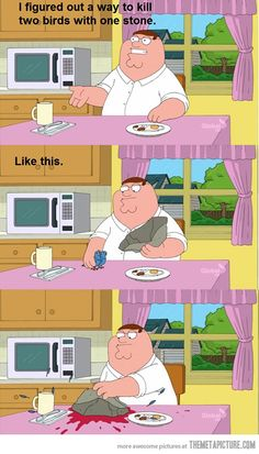 funny Peter Griffin two birds one stone