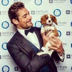A man who loves dogs ... ❤ #DavidGandy #DogLover @batterseadogsandcatshome ❤