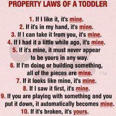 The basics of property law... LOL