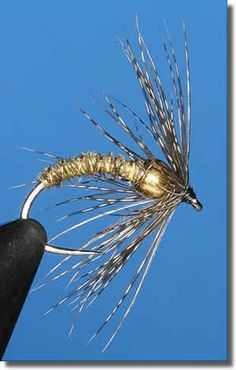 Beaded soft hackle. Not sure if the hackle in front is better/worse than having it behind the bead. Worth testing some time.