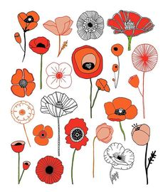 Poppies! From my book, 20 Ways to Draw a Tulip & 44 Other Fabulous Flowers, available in my Etsy shop & wherever books are sold // lisacongdon.etsy.com