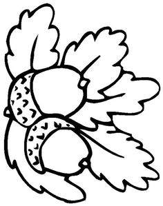 Trendy embroidery leaf coloring pages Leaf Coloring Page, Fall Coloring Pages, Coloring Sheets, Coloring Books, Fall Coloring Pictures, Mandala Coloring, Free Coloring, Adult Coloring, Wool Applique