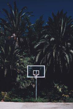 #basket #court #palms #photography #fotagrafie #fotografia