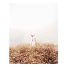Hue / Gold by ioegreer instagramers I like