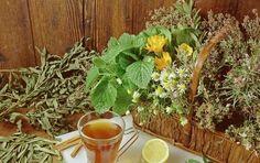 Bylinky podle zvěrokruhu: Podívejte se, které pomohou právě vám a jak! Pití čaje má své půvaby...