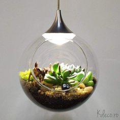 terariu lustra ECO LED (dia.12cm) Terrarium, Led, Home Decor, Cluster Pendant Light, Plant, Terrariums, Interior Design, Home Interior Design, Home Decoration