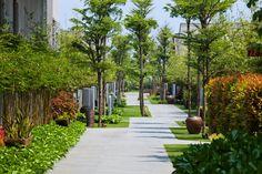 Naman Retreat Resort, Vo Trong Nghia Architects, los hoteles de las fotos del mundo, las revisiones de las mejores fotos de los hoteles, los hoteles más interesantes de las imágenes del mundo