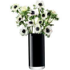 LSA International Flower Colour Black Cylinder Bouquet Vase - 28cm (155 BRL) ❤ liked on Polyvore featuring home, home decor, floral decor, flowers, plants, fillers, decor, black, flower home decor and lsa international