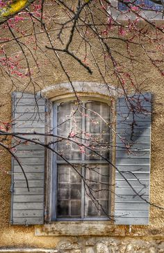 Le Printemps à Pernes les Fontaines, Vaucluse, Provence, France