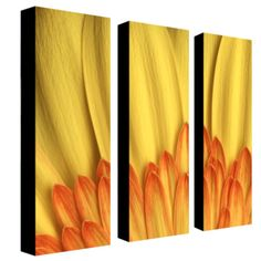 "Trademark Fine Art Three 8x24 inch pieces ""Flame"" by Aiana"