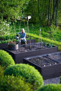 Hottest Pics painted Raised Garden Beds Suggestions Guaranteed, that may be a bizarre headline. Nevertheless indeed, when When i first made our raised garden beds. Vege Garden Design, Veg Garden, Edible Garden, Garden Planters, Garden Cottage, Vegetable Gardening, Fruit Garden, Garden Boxes, House Garden Design