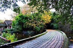 St. James Park. London, England