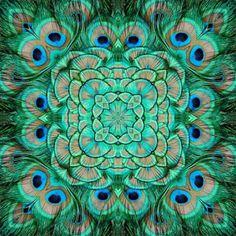 peacock tile?