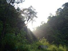 Coban Talun, Batu-Malang-Jawa Timur