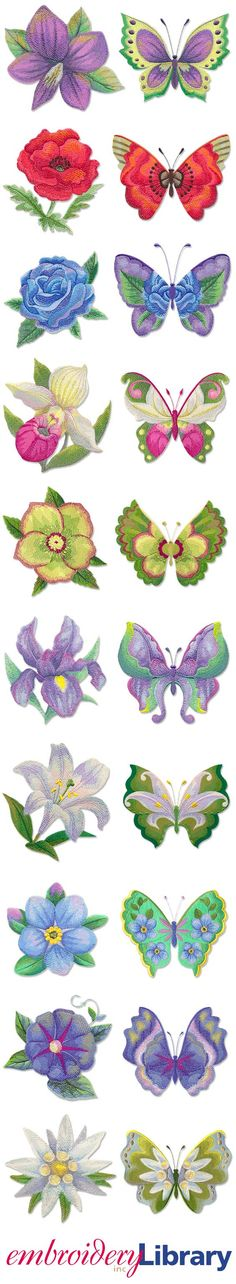 A Watercolor Blooms and Butterflies Design Pack from Embroidery Library