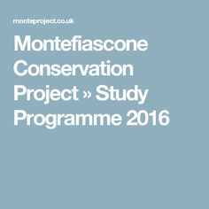 Montefiascone Conservation Project » Study Programme 2016
