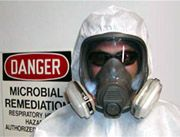 Mold Health Risks – health effects of mold growing indoors – Black Mold and Health, Toxic Mold Health Effects