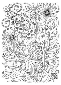 Creative Haven AMAZON ANIMALS A Coloring Book With Hidden Picture Twist By Jan Sovak COLORING PAGE 3 See More 08008 2Daisies 5x7 Line 72