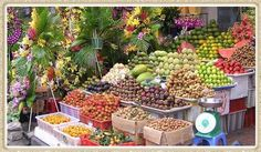 Saigon - Ho Chi Minh City Travel Information