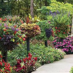 Add Height with Planters and Baskets Add dimension to your yard with elevated planters and hanging baskets. It creates a sea of beautiful color. Plants love the good drainage and aeration that raised planters provide. Basket Planting Guide Each basket ...