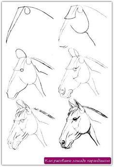 Как рисовать лошадь карандашом. Урок №7