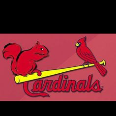 NLCS Champions and onto the World Series! 9716948ce36