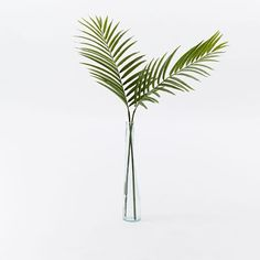 I have rounded up a gorgeous selection of spaces to demonstrate how decorating with palm fronds can added a fresh and beautiful addition to nearly any room!