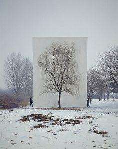 Drawing Winter