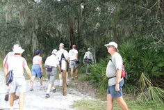 HIKING CLUB Purpose: Hiking allows Club members to enjoy Florida's natural beauty, observe wildlife and improve physical fitness. Hiking as a g. Sun City Center, Hiking Club, Physical Fitness, Outdoor Activities, Florida, The Florida, Field Day Activities