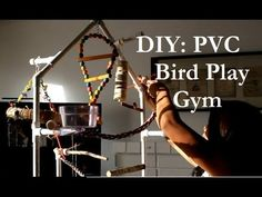DIY: PVC Bird Play Gym,  She lists all the materials needed and even builds one (in ff) FANTASTIC how-to! And she makes another one, here:  http://youtu.be/x2EDsjAfYcY