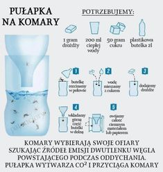 DomPelenPomyslow.pl Jak odstraszać owady w domu Diy Crafts Hacks, Diy And Crafts, Herb Garden Pallet, Stuff And Thangs, Diy Cleaners, Simple Life Hacks, School Notes, Self Improvement Tips, Always Learning