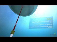 Произвеждат ток от мощността на вълните (ВИДЕО)