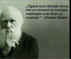 Charles Darwin, Einstein, Internet, Funny, Funny Parenting, Hilarious, Fun, Humor