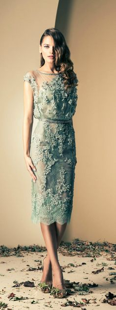 Fall-Winter Haute Couture Collection 2013-2014 Ziad Nakad