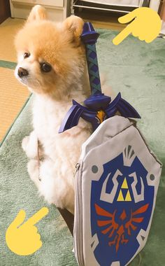 Dog Link cosplay - Pic by @triforce_gzl - #doge